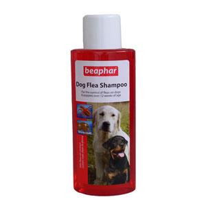 Flea Shampoo for Dogs1
